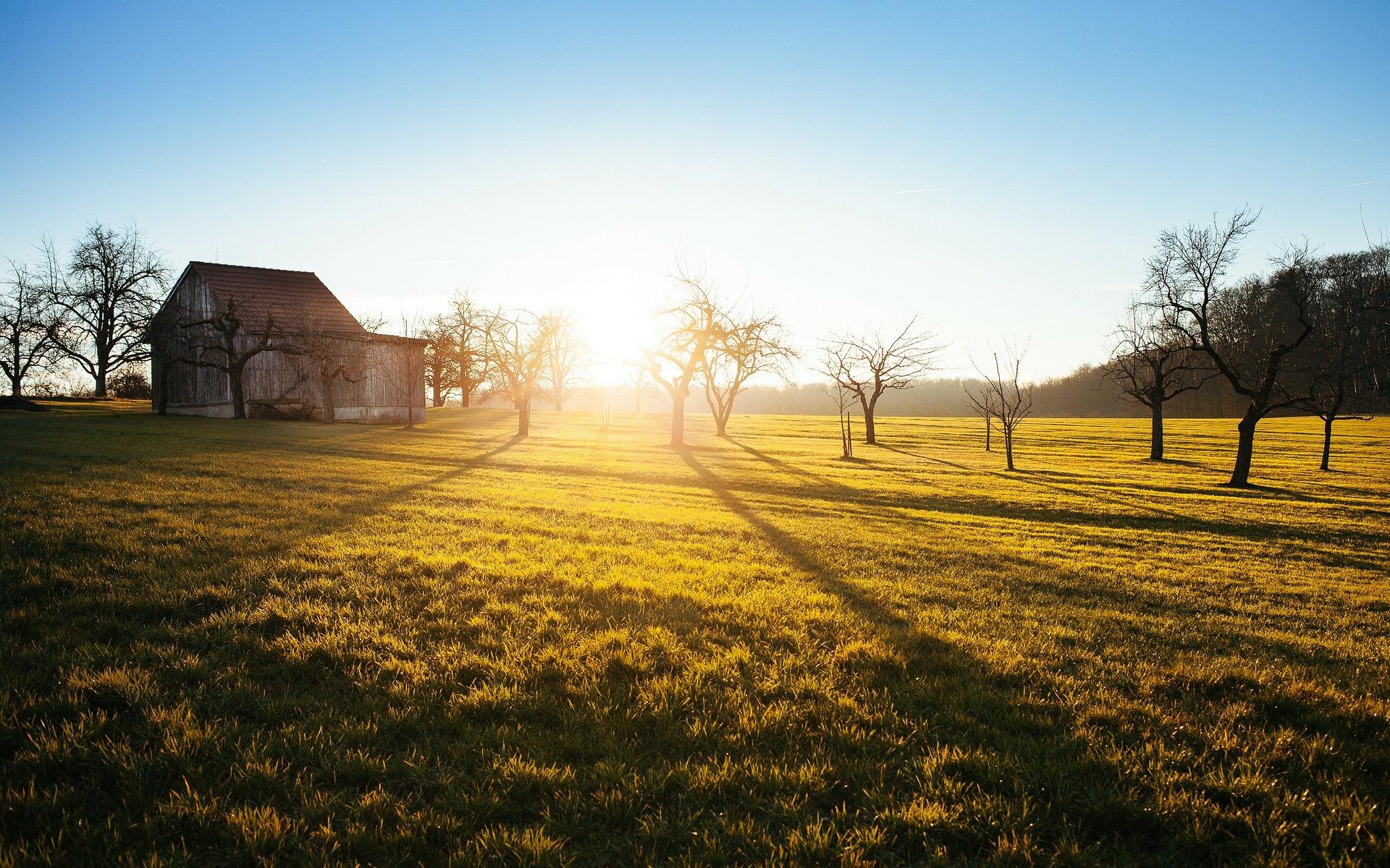 farm-336549_1920